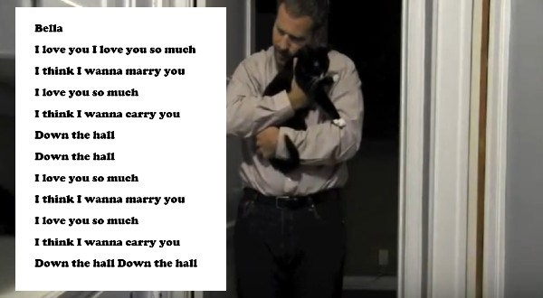 guy writes songs for his cat   bella i love you i love you so much i think i wanna marry you i love you so much i think i wanna carry you down the hall down the hall i love you so much i think i wanna marry you i love you so much i think i wanna carry you down the hall down the hall