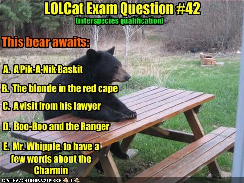 LOLCat Exam Question #42