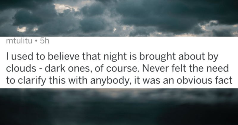 A collection of AskReddit replies to the dumbest things people believed as kids   posted by mtulitu used believe night is brought about by clouds dark ones course. Never felt need clarify this with anybody an obvious fact