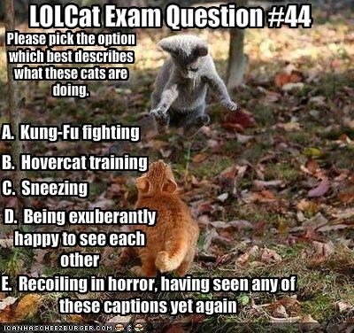 LOLCat Exam Question #44