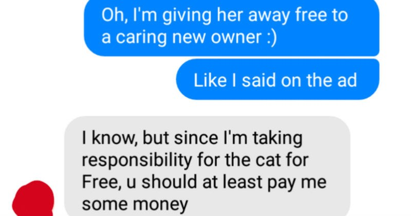 Ridiculous choosing beggars who made absurd demands | Oh giving her away free caring new owner Like said on ad know, but since taking responsibility cat Free, u should at least pay some money