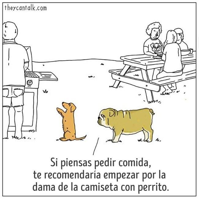 bromas viñetas listas animales - 1027333
