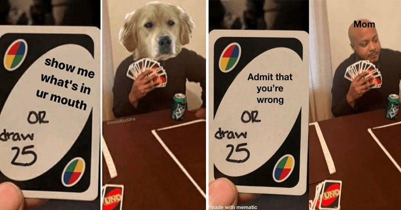Funny memes about Uno, dank memes, history memes, board games, meme about texting ex or drawing 25 cards, draw 25 meme | meme format where in 1st pic a uno card is shown and in the 2nd pic a person holding a lot of uno cards is shown. dog player show s ur mouth OR draw 25. Mom player Admit wrong OR draw 25