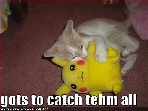gots to catch tehm all