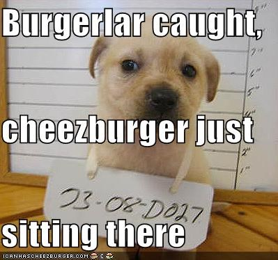 Cheezburger Image 1030361856