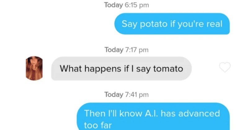 A collection of wins and fails from various people on the Tinder dating app   Say potato if real Today happens if say tomato Then l'll know has advanced too far