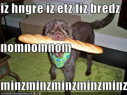 Cheezburger Image 1032749312