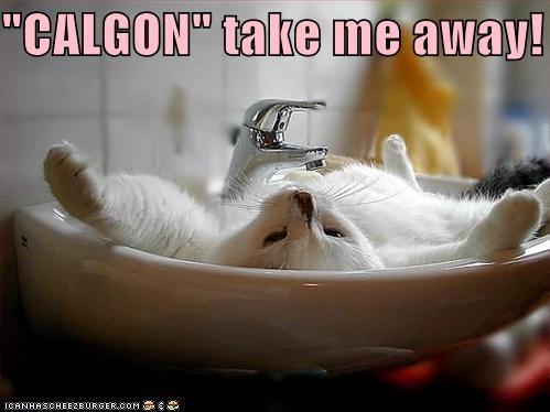 CALGON\