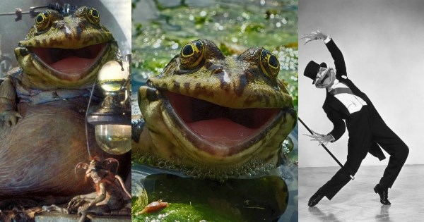 list photoshop battle frog - 1034757