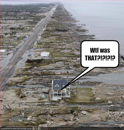 Natural Disasters - 1035359488