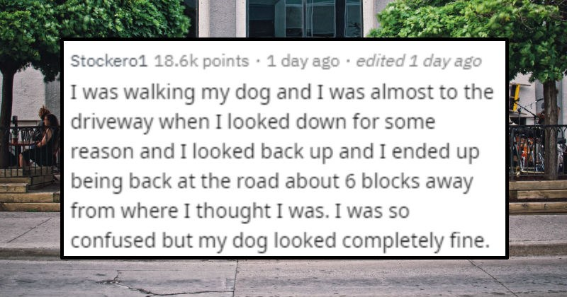 Strange and unlikely moments that felt like a glitch | posted by Stockero1 walking my dog and almost driveway looked down some reason and looked back up and ended up being back at road about 6 blocks away where thought so confused but my dog looked completely fine.