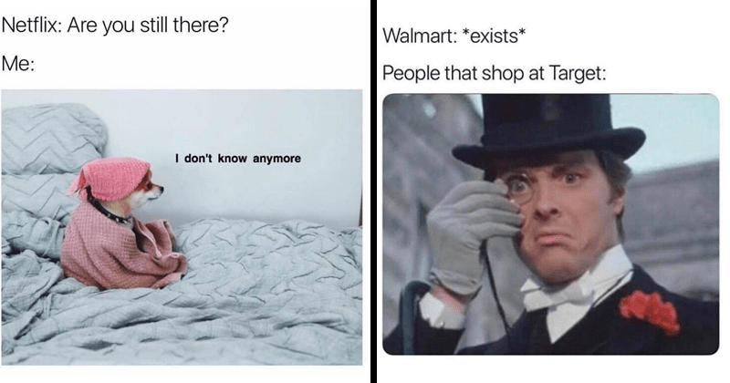 funny random memes, funny comics, strange planet, stupid memes, relatable memes, relatable tweets, dank memes | dog wrapped in a towel on a bed: Netflix: Are still there don't know anymore. Walmart exists People shop at Target: man in a top hat and a monocle
