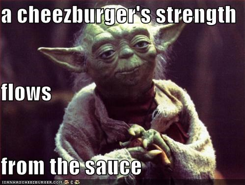 Cheezburger Image 1036505856