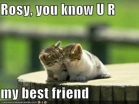 Rosy You Know U R My Best Friend Cheezburger Funny Memes