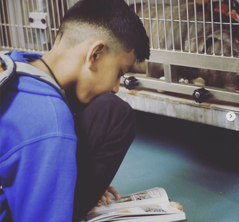 boy reads to dogs in animal shelters | nyc kid in blue sweatshirt with a backpack on his back sitting on the floor reading a book to a dog inside a cage in an animal care center