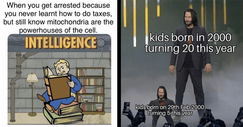 funny memes, random memes, funny random memes, keanu reeves memes, little keanu, school memes, meme about how you get arrested for messing up your taxes but you know that mitochondria is the powerhouse of the cell, keanu reeves meme about leap year | vault boy reading a book: get arrested because never learnt do taxes, but still know mitochondria are powerhouses cell. INTELLIGENCE. kids born 2000 turning 20 this year kids born on 29th Feb 2000 turning 5 this year
