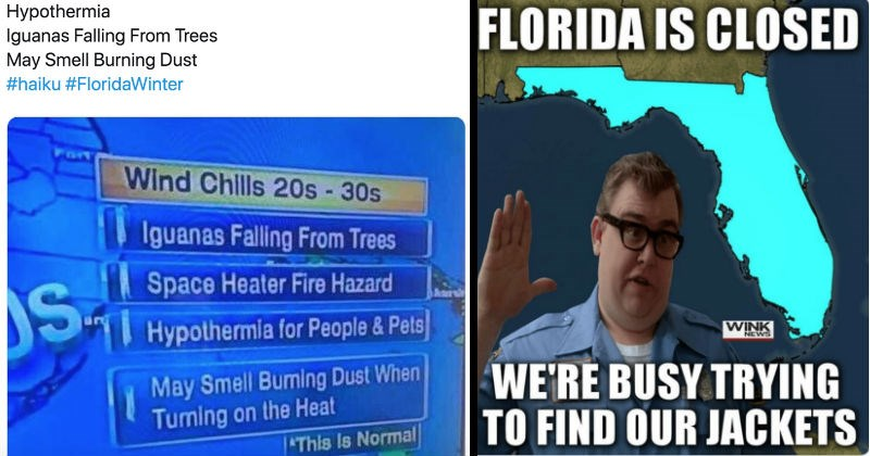 Winter hits Florida and people react in hilarious fashion on Twitter   Hypothermia Iguanas Falling Trees May Smell Burning Dust #haiku #FloridaWinter Wind Chlls 20s 30s Iguanas Falling Trees Space Heater Fire Hazard Hypothermia People& Pets May Smell Buming Dust Tuming on Heat This Is Normal. FLORIDA IS CLOSED BUSY TRYING FIND OUR JACKETS
