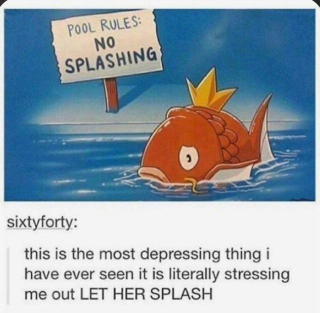 top ten 10 tumblr posts daily   sad magikarp pokemon POOL RULES: NO SPLASHING sixtyforty: this is most depressing thing have ever seen is literally stressing out LET HER SPLASH