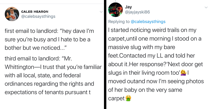 Funny twitter thread about emailing with landlords | tweet by calebsaysthings first email landlord hey dave l'm sure busy and hate be bother but noticed third email landlord Mr. Whittington- trust familiar with all local, state, and federal ordinances regarding rights and expectations tenants pursuant.