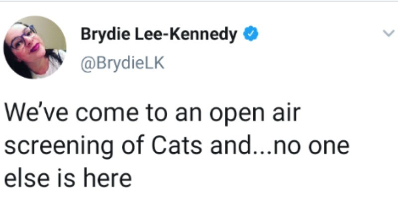 "Woman on Twitter live tweets her experience seeing ""Cats"" the movie outdoors 