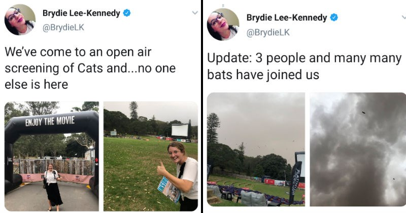 Woman's Twitter story about going to Cats movie screening doesn't go well | tweet by Brydie Lee-Kennedy BrydieLK come an open air screening Cats and no one else is here. Update: 3 people and many many bats have joined us
