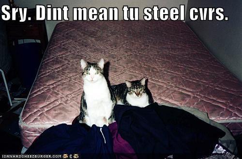 Sry. Dint mean tu steel cvrs.