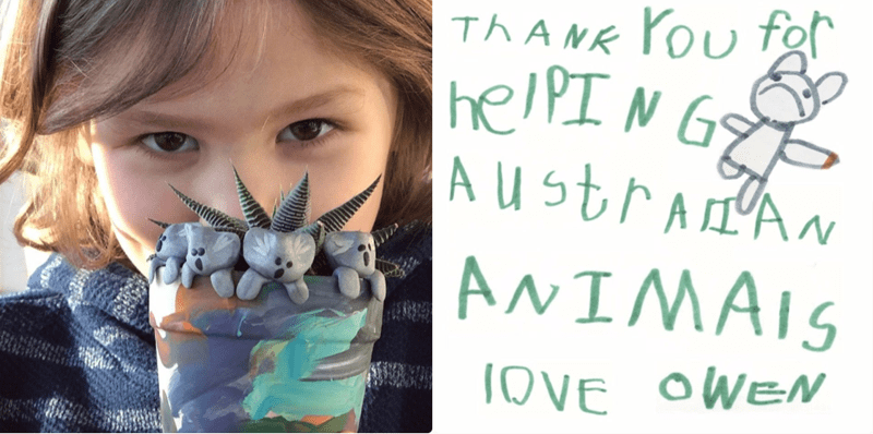 Boy makes clay Koalas to Raise Money For Injured Animals in Australia | note handwritten by child: THANK YOU FOR HELPING AUSTRALIAN ANIMALS LOVE OWN photo of a young boy holding a small plant with koala sculptures in it