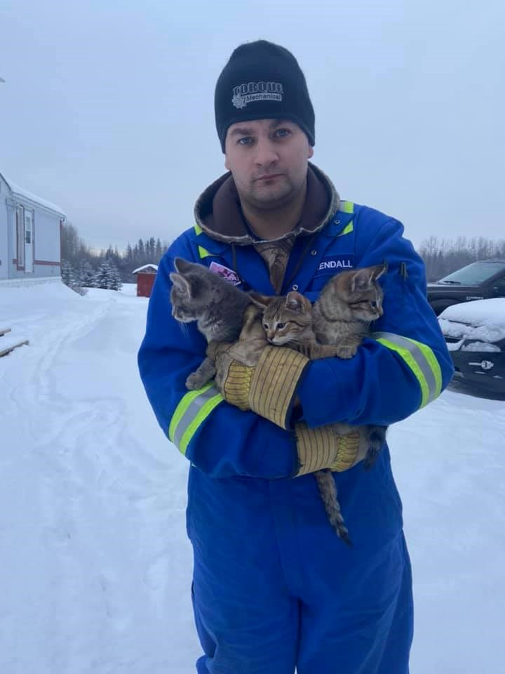 frozen kitten cats coffee video rescue hero animals smart quick thinking clever thaw | man in full body safety suit standing in the snow holding three cats