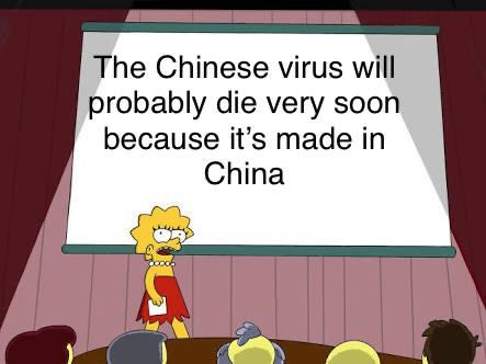 simply the most entertaining and fantastic memes in all the land. The cover photo is Lisa Simpson discussing the fact that like the quality of some Chinese products the virus as a Chinese product itself will not last long