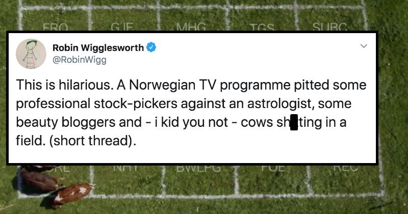 Norwegian TV program pits professional stock-pickers up against beauty bloggers, astrologist, and actual cows | tweet by RobinWigg This is hilarious Norwegian TV programme pitted some professional stock-pickers against an astrologist, some beauty bloggers and kid not cows shitting field short thread