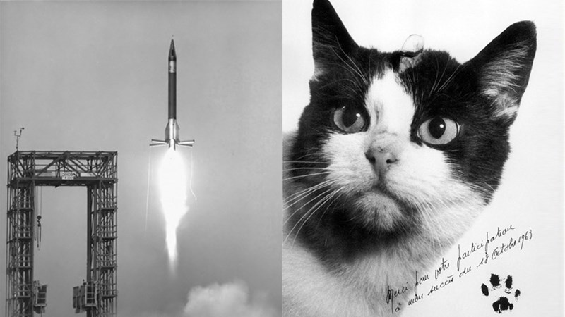 First Cat in Space gets a memorial | black and white photo of a spaceship being launched, vintage style headshot of a black and white cat named Felicette who was sent to space
