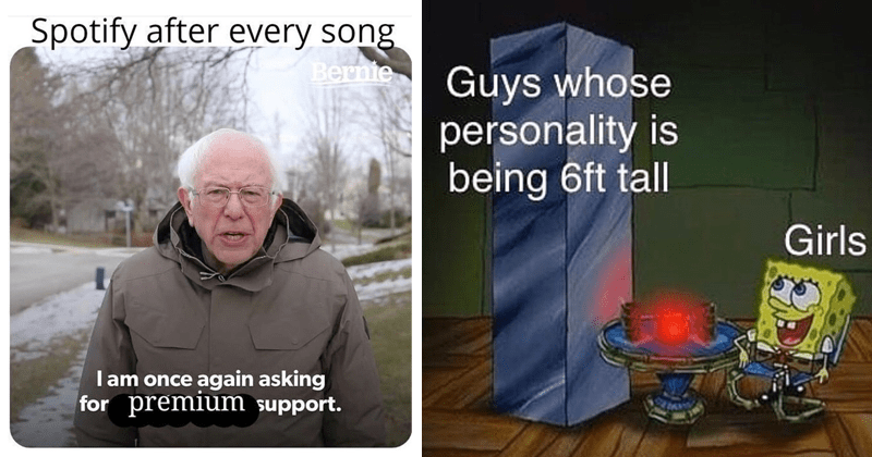funny memes, random memes, dank memes, bernie sanders, bernie sanders memes, stupid memes | bernie sanders meme: Spotify after every song l am once again asking premium support. spongebob on a date with marble block Guys whose personality is being 6ft tall Girls
