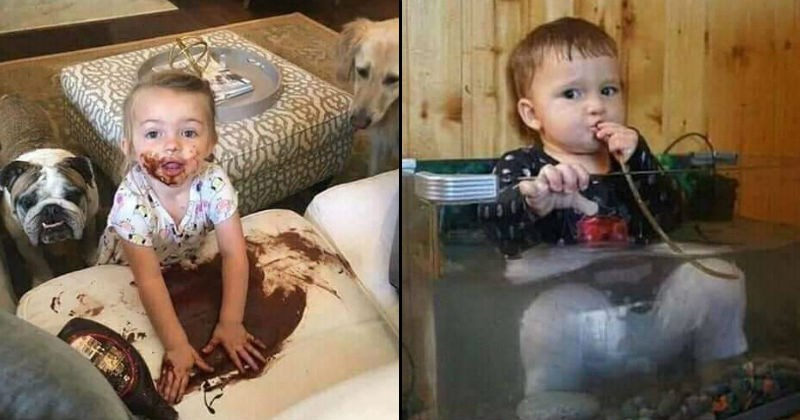 Children being frustrating and messy | pic of a baby smearing the contents of a discarded chocolate syrup bottle all over a white couch and their own face, two dogs are watching from behind. pic of a toddler sitting inside an aquarium and putting a tube from the water filtering system in their mouth.