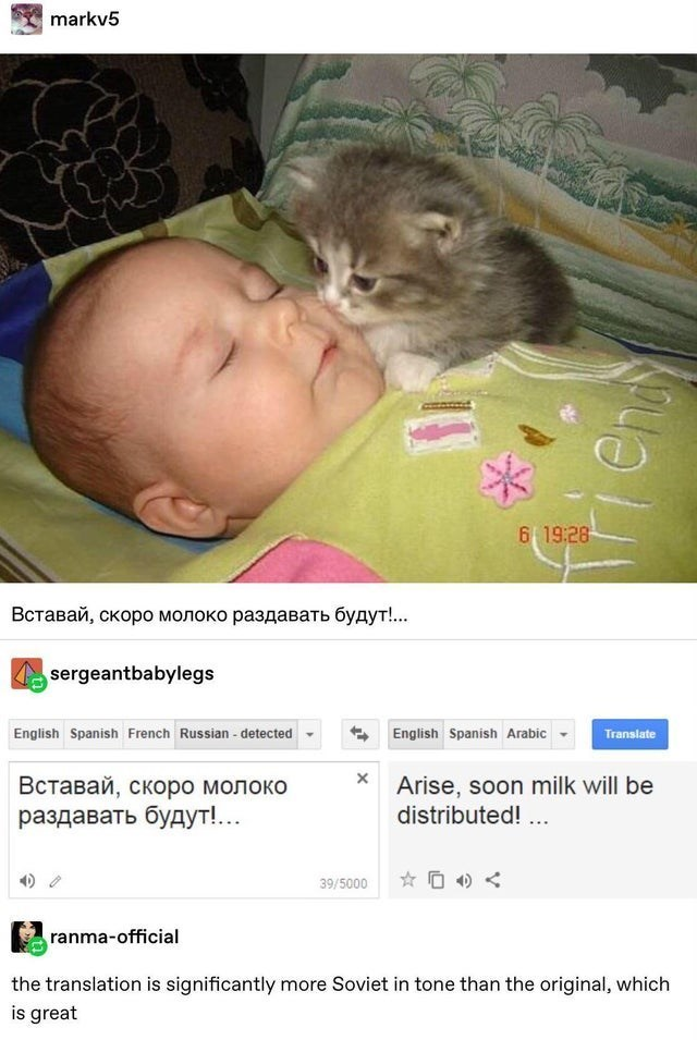 top ten 10 tumblr posts daily | markv5 6 19:28 sergeantbabylegs English Spanish French Russian detected English Spanish Arabic Translate Arise, soon milk will be distributed 39/5000 ranma-official translation is significantly more Soviet tone than original, which is great