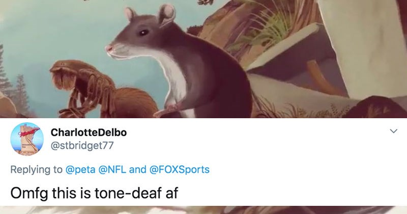 Twitter reactions to PETA's rejected Super Bowl ad | drawing of a squirrel and an arachnid kneeling: tweet by CharlotteDelbo @stbridget77 Replying peta @NFL and @FOXSports Omfg this is tone-deaf af