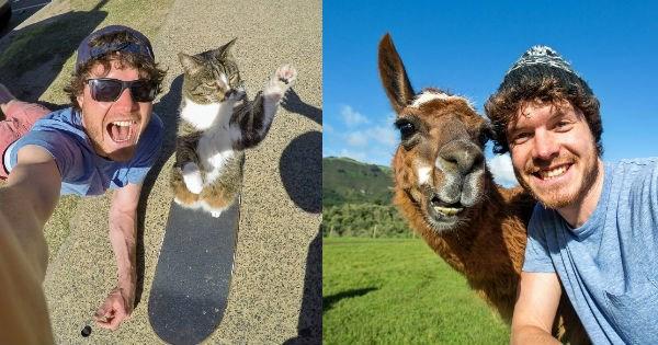 instagram wildlife selfie animals - 1049861