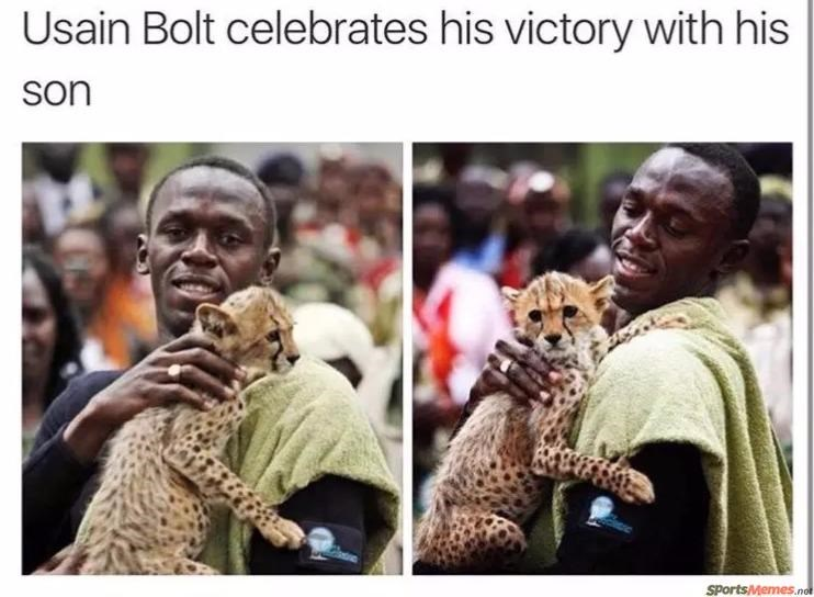 "Hilarious sports memes that will have you chuckling all day long. The cover photo is of Usain Bolt holding a cheetah with a caption of it being him celebration with his ""son"" due to his quickness"