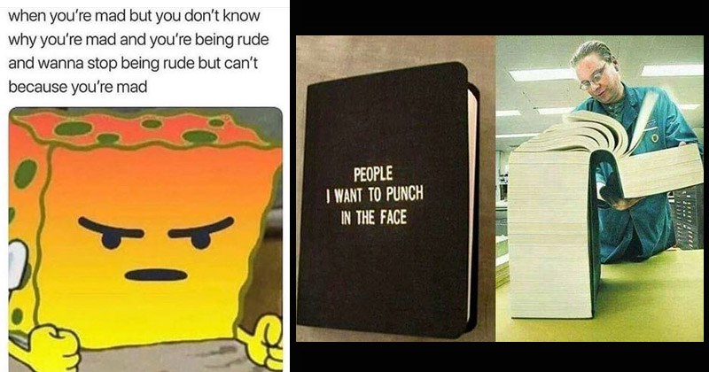 Funny memes and tweets about being angry | angry Spongebob mad but don't know why mad and being rude and wanna stop being rude but can't because mad. PEOPLE WANT PUNCH FACE: huge book.