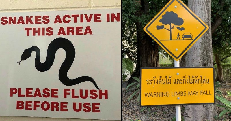 Scary and threatening warning signs | SNAKES ACTIVE THIS AREA PLEASE FLUSH BEFORE USE. yellow sign with an image of a tree branch falling on a person near a car WARNING LIMBS MAY FALL