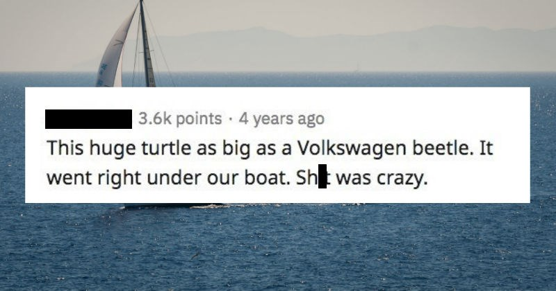 Sailors of Reddit share the creepiest things they've seen at the sea   posted by scudponies This huge turtle as big as Volkswagen beetle went right under our boat. Shit crazy.