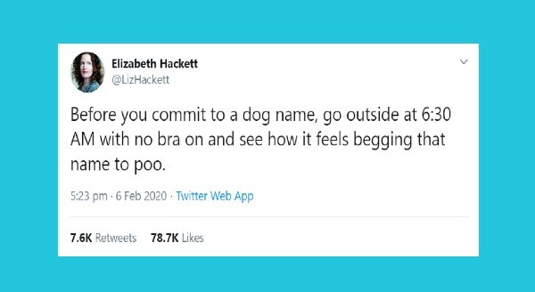 Funniest animal tweets   tweet by Elizabeth Hackett @LizHackett Before commit dog name, go outside at 6:30 AM with no bra on and see feels begging name poO. 5:23 pm 6 Feb 2020 Twitter Web App 7.6K Retweets 78.7K Likes
