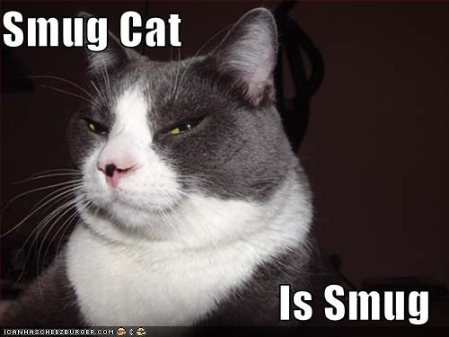 Smug Cat Is Smug Cheezburger Funny Memes Funny Pictures