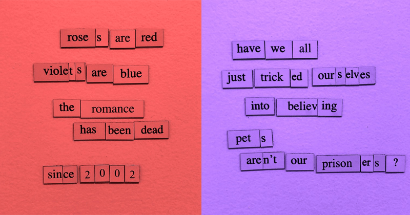 Funny and depressing fridge magnets poems from the depressing fridge poems instagram account, nihilistic, cynical | roses are red violets blue are romance has been dead since 2002 have all just tricked ourselves believing into pets aren't our prisoners