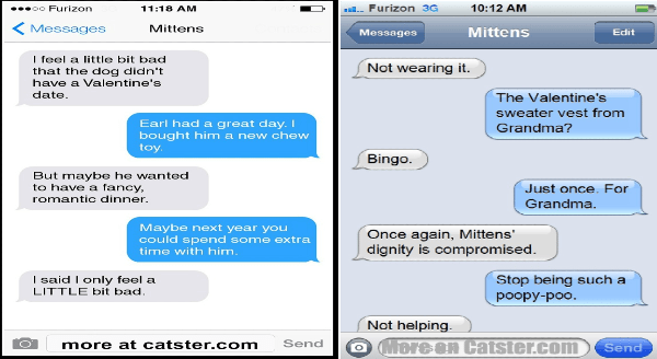 Funny text messages with mittens the cat on Valentine's day | Mittens feel little bit bad dog didn't have Valentine's date. Earl had great day bought him new chew toy. But maybe he wanted have fancy, romantic dinner. Maybe next year could spend some extra time with him said only feel LITTLE bit bad. Mittens Not wearing Valentine's sweater vest Grandma? Bingo. Just once Grandma. Once again, Mittens' dignity is compromised. Stop being such poopy-poo. Not helping