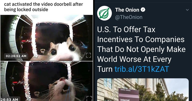 Funny random memes | fish eye lens security camera footage cat activated video doorbell after being locked outside 02:26:52 AM 26:53 AM tweet @TheOnion U.S Offer Tax Incentives Companies Do Not Openly Make World Worse At Every Turn