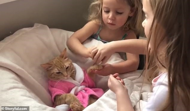 Spa treatment for a cat | cute orange cat wearing a pink bathrobe and lounging on a pillow getting pampered spa treatment by two little kids who are giving it a paw massage comfy comfortable treat yourself self care self love pet spa and nail salon
