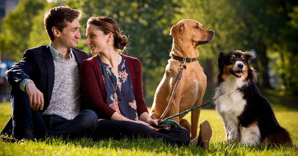 dogs,love story,engaged,sweet,couple