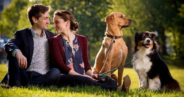 dog love story