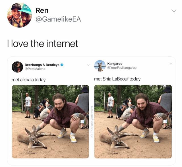 top ten white people tweets | Person - GOL Ren @GamelikeEA love internet Kangaroo @YourFavKangaroo Beerbongs Bentleys @PostMalone met Shia LaBeouf today met koala today IG: TheFunnylntrovert