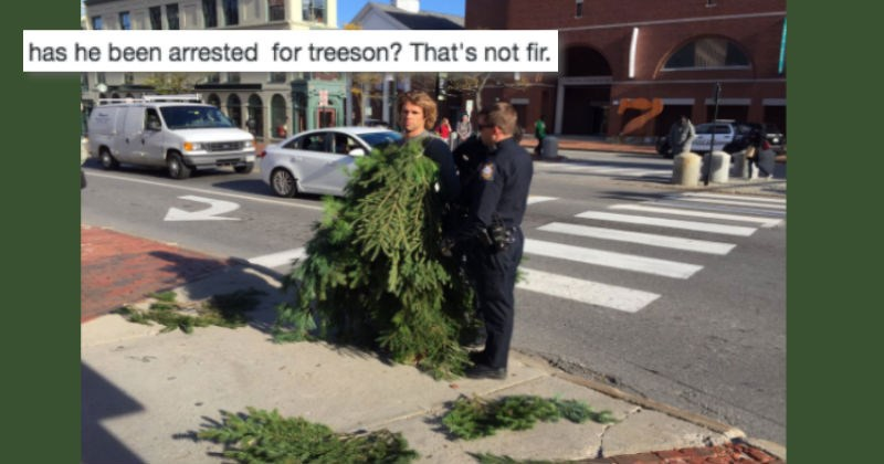 puns about the arrest of a man dressed as a tree